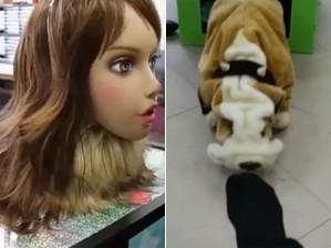 Robôs que sentem cheiro têm forma de mulher, para o hálito, e cão, para o chulé (Foto: Divulgação/via BBC)