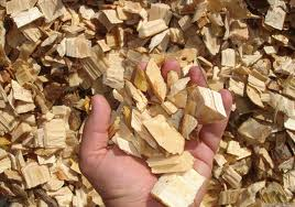 biomassa-8