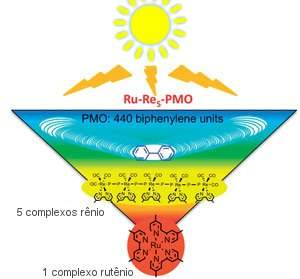 O sistema híbrido concentra os fótons absorvidos em duas etapas, primeiro nos oligômeros de rênio, e depois no centro de reação de rutênio.