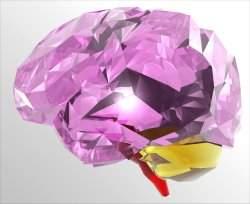 O objetivo do Projeto Cérebro Humano é compreender o mau funcionamento do cérebro humano, que leva a doenças como Parkinson e Alzheimer.