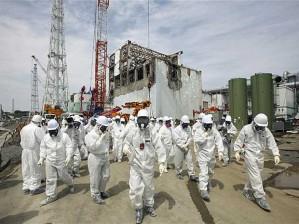 fukushima- postagem 2