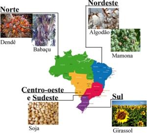 biodiesel-em-cada-regiao-do-brasil